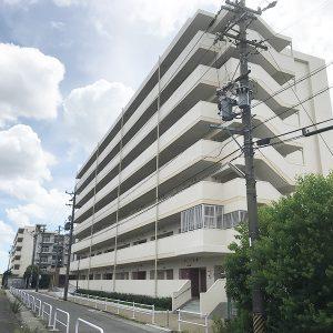 img_yamadahigashi3